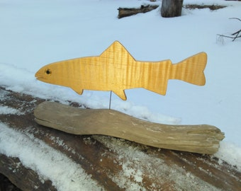 Trout (curly maple)
