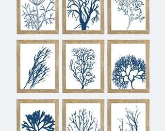 Blue and White Sea Coral Art Printables, INSTANT DOWNLOAD, Nautical Art, Marine Life, Botanical Art, Navy Coastal Art, Gallery Wall Set of 9