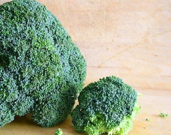 Broccoli Hair Creme