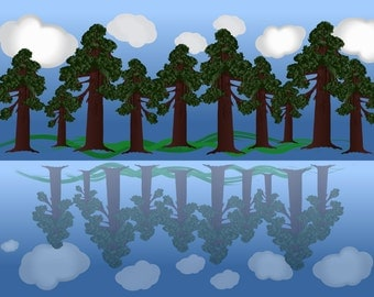 Graphic illustration print poster *Sequoia forest