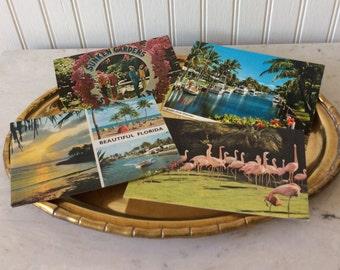 SALE..Vintage Florida Postcards, Set of 4, Flamingos, Palm Trees, Parrots, San Diego Zoo, Sunken Gardens, Coastal, Scrapbook, Memorabilia