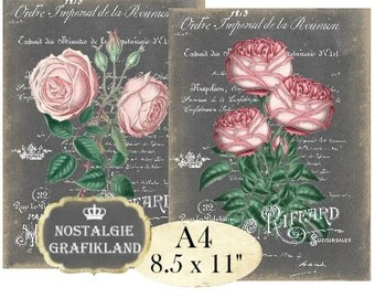 Chalkboard Roses Shabby Chic French A4 Instant Download printable Decoupage Transfer digital collage sheet A103