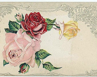 Vtg Postcard Red Pink Yellow Roses Early 1900s Unused