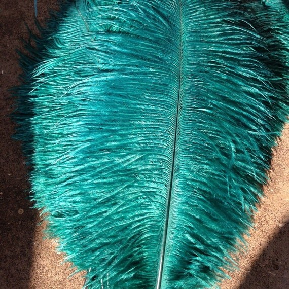 Ostrich feathers plumes pieces red blue green orange purple