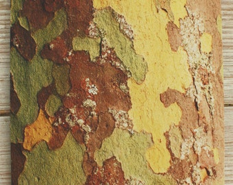 Mouse Pad mousepad Tree Bark Fine Art Original Photography