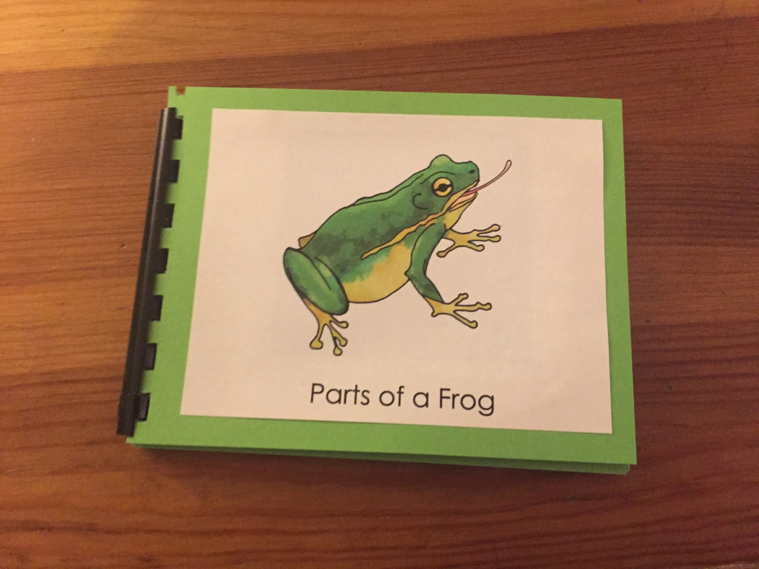 squishy frog parts author katie davis how to write a childrens book