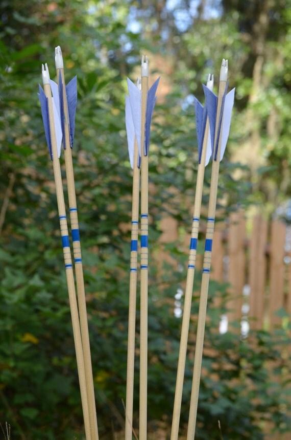 Archery Arrows, Junior archers, Poplar shafts set of 6 blue and silver for kids, bonus finger tab