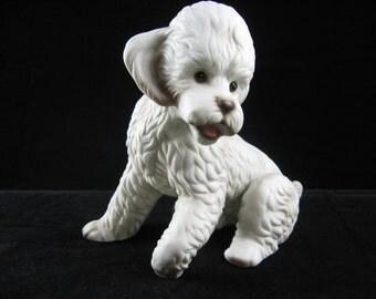 Ceramic White Sitting Poodle Glass Eyes 1950's made in Japan Vintage Poodle Dog Figurine