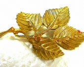 Vintage Leaf Brooch Four Leaves & Branch Gold Plate DuBarry DFA Nice Detail Ladies Jewelry Holiday or Birthday Gift