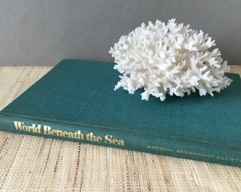 vintage scuba book | Vintage coastal decor | gifts scuba divers | vintage scuba diving | scuba gift | scuba diving | vintage beach decor