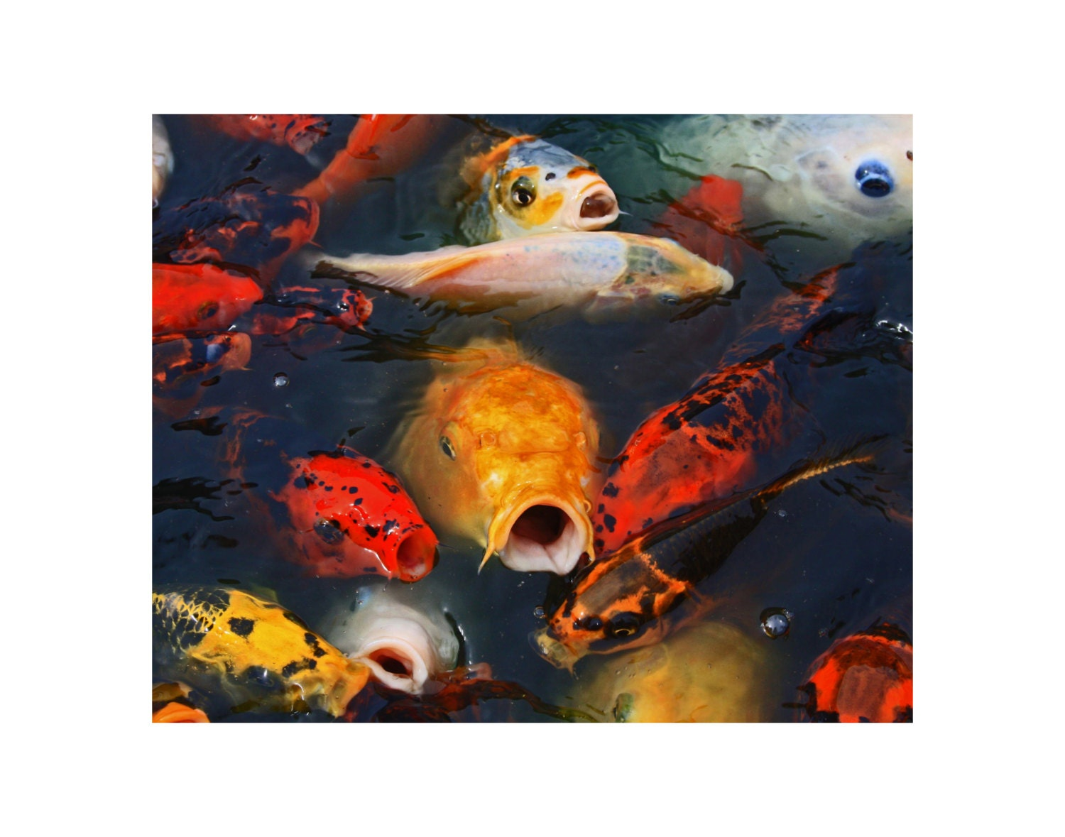 100 modern home lighting design 35 sublime koi pond for Koi home decor