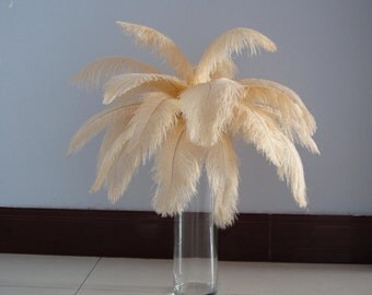 100pcs Champagne Ostrich Feather Plume for Wedding centerpieces