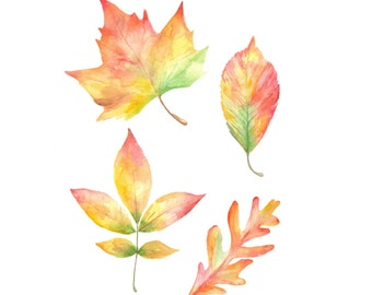 Fall Leaves, Autumn Watercolor, Painting, Fall Decor, Autumn Leaves, Autumn, Welcome Fall, Colorful Leaves, Autumn Decor, Leaf Watercolor