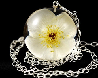 Resin pendant with natural sweet mock-orange (Philadelphus sp.) in large sphere on a silver chain. Sphere 4 cm. Chain 80 cm.