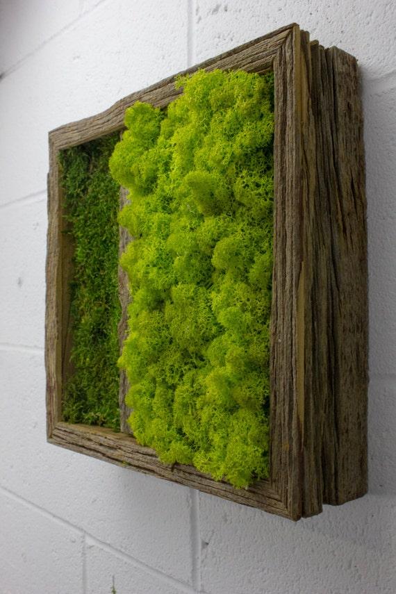 Twinz Wasser kostenlos grüne Wandkunst Moos und von FlowerBoxEtsy