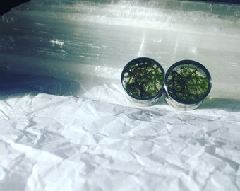 Forest inspired moss or lichen specimen plugs