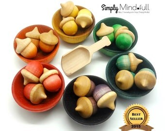 Organic Waldorf/ Montessori inspired wood acorn color sorting, counting, travel activity