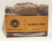 Juniper Aloe Soap - Natural Soap - Handmade Soap - Cold Process Soap
