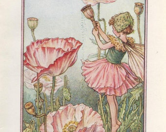 Flower Fairies: The SHIRLEY POPPY FAIRY Vintage Print c1930 by Cicely Mary Barker