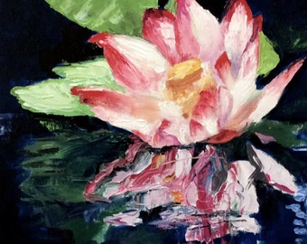 pink and white waterlily reflected in rippling water