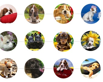 "Puppies Dogs # 2 - 1"" Inch Bottle Cap Images Digital Download - 12 images for a 4 x 6 Sheet Size  Puppy, Dog, Canines"