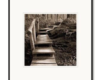 Framed photography, black and white photography, pacific northwest photography, sepia prints, Washington State, Neah Bay, zen pathway