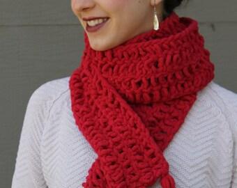 Thick Crochet Scarf with Tassels (Bernat Blanket Yarn)