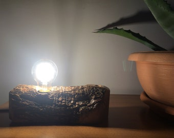 Olive tree trunk wood table lamp