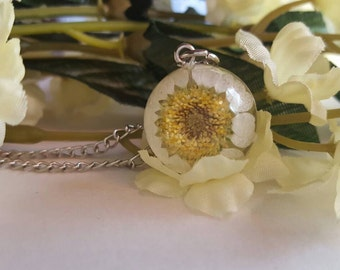 Daisy pendant real daisy necklace daisy jewelry pressed flower necklace daisy jewellery botanical gift for a nature lover spring fashion