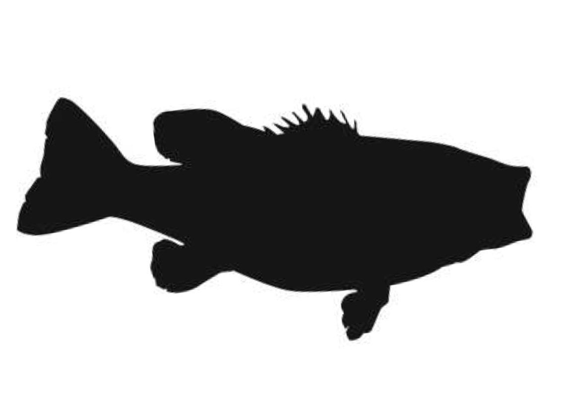 Largemouth Bass Stencil Made From 4 Ply Mat Board