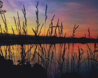 Lake Side View