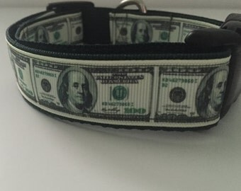All About The Benjamins Dog Collar