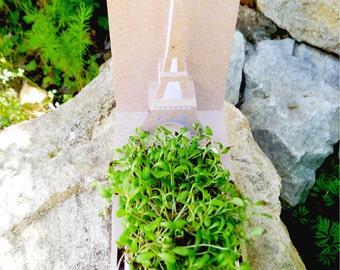 Green PopUp - Paris Tower