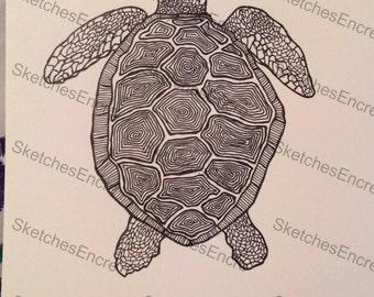Sea Turtle 6'X8' Sketch