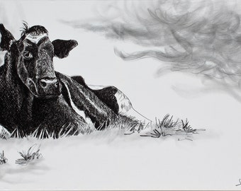 HOLSTEIN cow art PRINT, original sharpie marker drawing holstein, large wall animal art illustration, black and white
