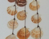 Seashell Windchime Mobile