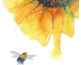 Nectar - Bee, Sunflower, Polinating, Wildlife, Bright, Spring, Watercolor Painting Available in Paper and Canvas by Olga Cuttell