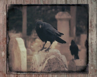 Dark Crow Image, Raven Photograph, Halloween Blackbird, Sepia Brown Hues, Gothic Wall Art, Goth Decor, Corvus - In Waiting