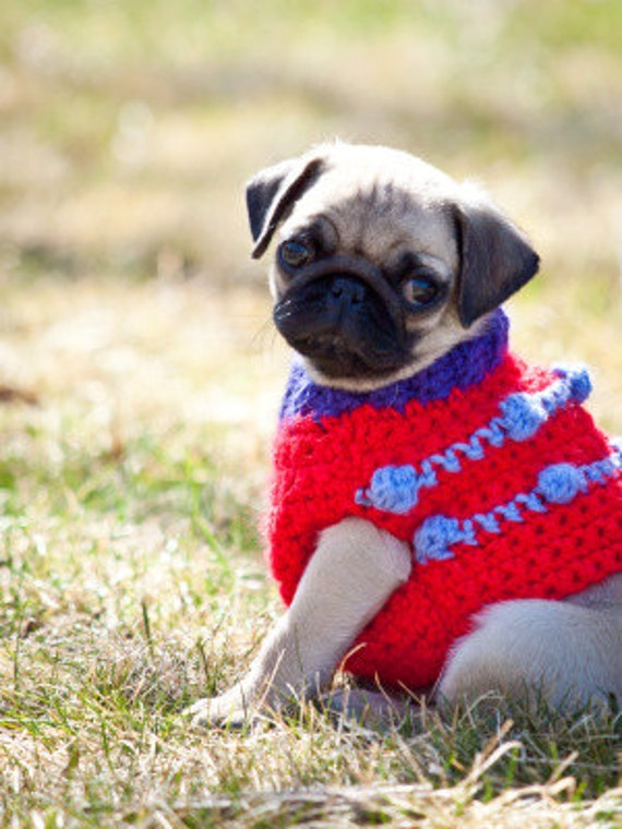 Custom Dog Sweater Vest - Crochet - Size XXS or XS - Made to Order for ...