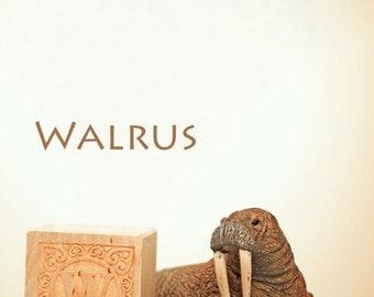 letter w print,  walrus photo, nursery art, nursery decor, childs room decor, child room art, letter art, alphabet photo, alphabet art