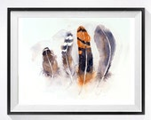 1. Feather art Watercolor Print Feather illustration orange Feather drawing Bird art print Watercolor still life of feathers Animal Art