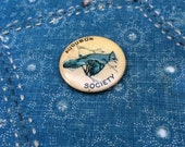 vintage c. 1910s Audubon Society celluloid pinback - blue jay