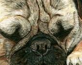 Pug Painting Print, A Pugs Life, Dog, Art Print, Reproduction, Fine Art, Pet, Realism, Pastel, 8 x 10, Painting Print, Giclee, Nature
