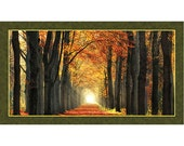In Love with Fall Again Artworks Digital Quilting Treasures Fabric Panel