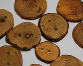 Handmade Wooden Tree Branch Buttons, Mixed Woods, One Inch and Under, Set of 12