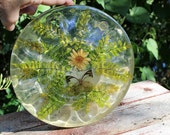 Vintage Resin Deviled Egg Tray, Butterfly Daisy, Ferns, AS IS