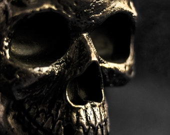 Dark Skull Close Up Horror Print Dark Print Various Sizes Macabre Scary Gold Metallic Skeleton 6x4 7x5 8x10