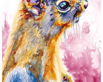 "5x7"" Squirrel Watercolor Giclee Fine Art Print [Watercolor Squirrel Portrait Print, Squirrel Print, Squirrel Art, Squirrel Watercolor Art]"