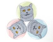 British shorthair cat magnet - british shorthair gift - blue grey british shorthair cat - russian blue cat gift - customizable colors