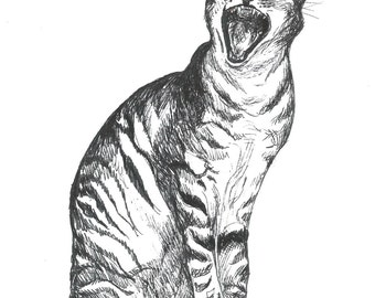 cat illustration - original pen and ink